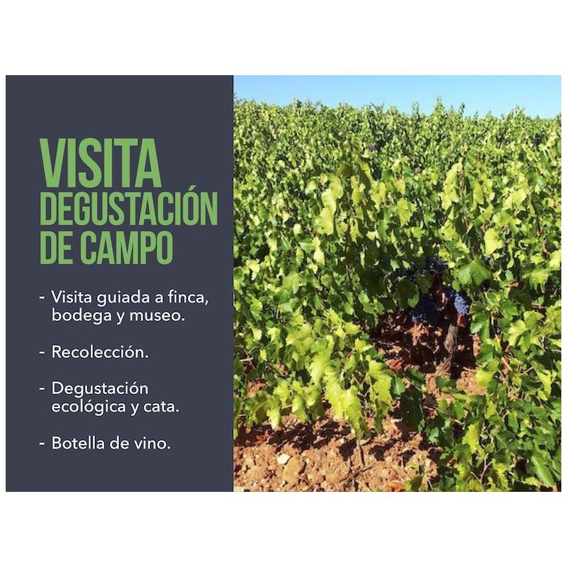 Visita degustación de campo Cortijo El Cura